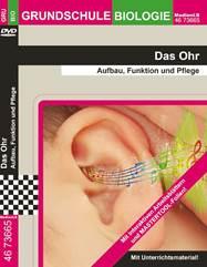 """Projekt """"Das Ohr"""""""